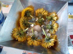 bijenwas, metalen en gele bloemen